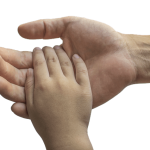 Child's hand in adults