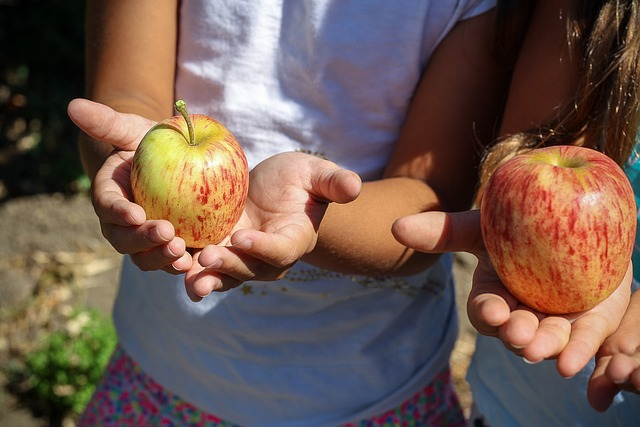 Girls holding apples in palm of hands