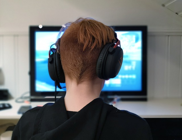 Teenage Boy Sitting in Front of Computer alone